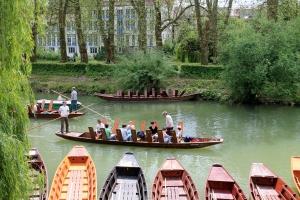 Stocherkahnfahrten auf dem Neckar