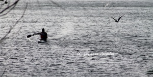 Vom Lanker See in den Kirchsee in die Schwentine Februar 2ooo vierzehn