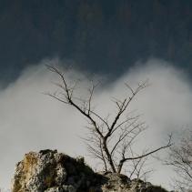 jbs 2tausend19 Schwäbische Alb - Reußenstein
